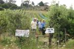 Onetangi trophy trail