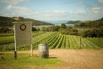 Passage Rock vineyard