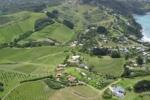 Vineyard aerial shot