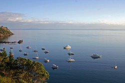 Waiheke Island's climate is strongly influenced by the surrounding sea