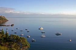 WWaiheke岛的气候主要受环绕海洋的影响。